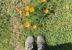 feet and flower
