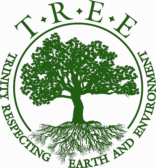 Trinity Espiscopal TREE logo