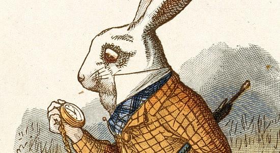 White-Rabbit Still Time
